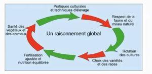 schéma bilan agriculture durable