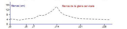 filance glaire